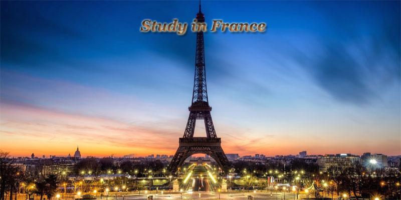 Studies in France